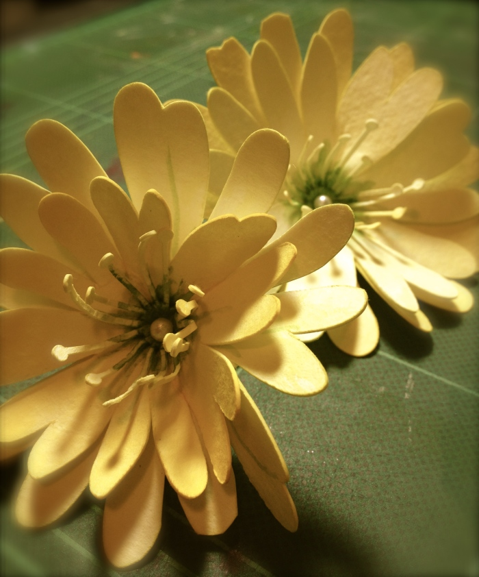 Watercolor paper flowers: Daisies